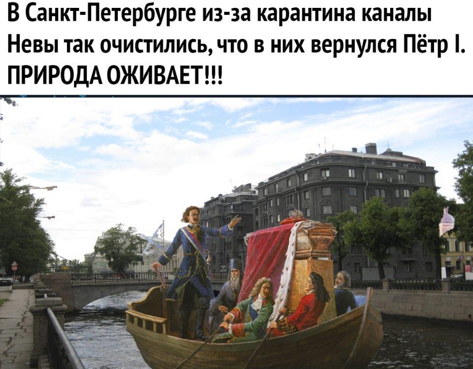 Шутки о карантине в СПб