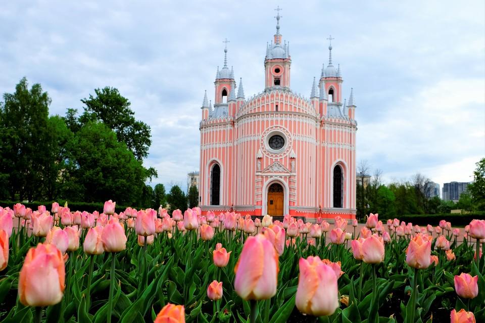 Церковь Рождества святого Иоанна Предтечи (Чесменская)