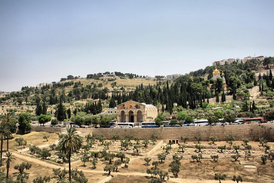 2. Общий вид на Гефсиманию, Елеонскую гору, долину Кедрон